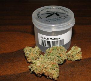Black Mamba Strain