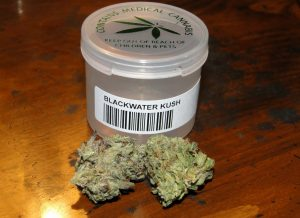 Blackwater Kush