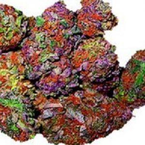 Rainbow Kush